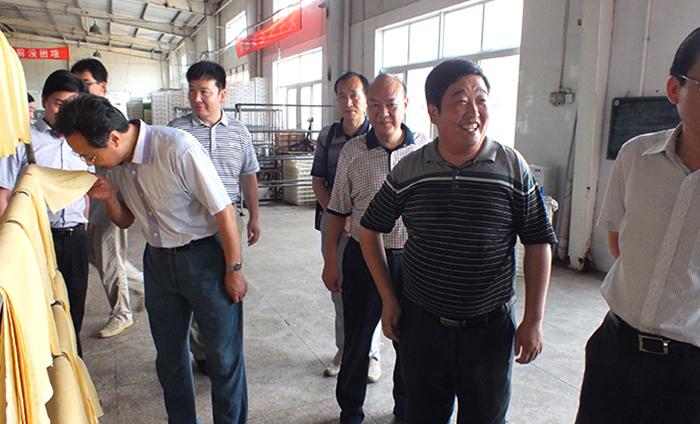 安徽省供销社领导莅临检查工作